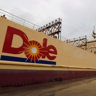 A vessel transporting containers with boxes of bananas is anchored in Guayaquil, Ecuador.
