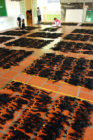 Workers begin sorting the natural-grown hair according to length and quality.