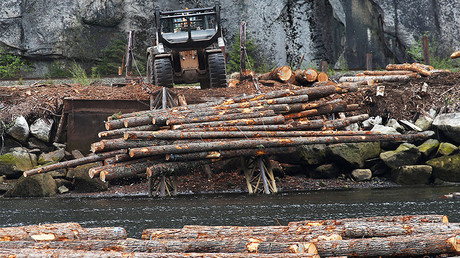 Logs are pushed into the water at Squamish Mills Ltd in Howe Sound near Squamish, British Columbia, Canada April 25, 2017. © Ben Nelms